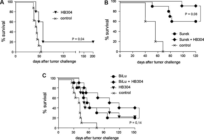 Direct trAb-mediated tumor destruction is moderately improved by combining trAb and anti-CTLA-4 therapy.