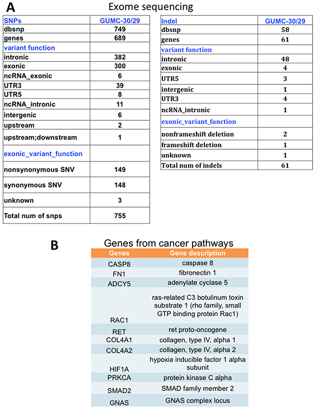 SNPs and INDELs and pathway analysis in tumor CR cells.