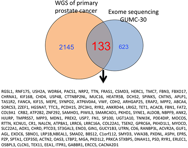 Overlapping genes from GUMC-30 and Garraway's study with NGS are shown.