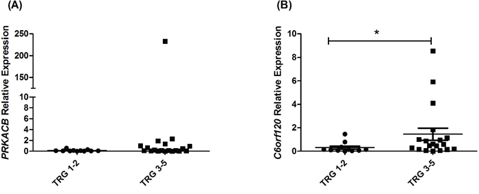C6orf120 is significantly increased in patients having a poor response to neoadjuvant CRT.