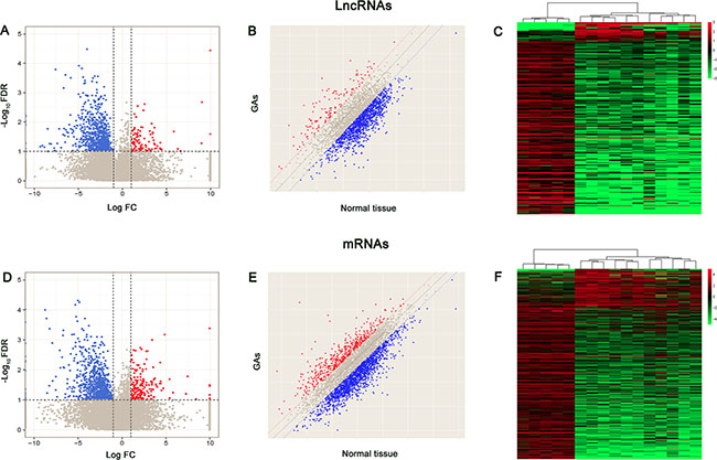 Volcano plots, scatter plots and heat map showing expression profiles of lncRNAs and mRNAs.