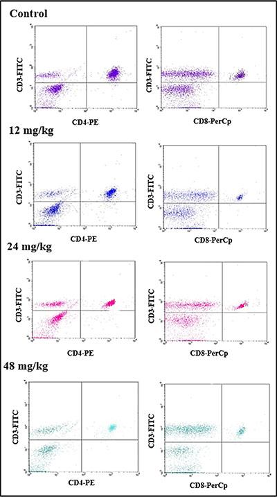 Changes of splenic T lymphocytes by FCM.