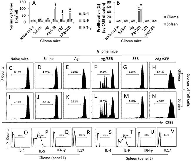 SEB facilitates glioma-specific Th9 response in glioma-bearing mice.