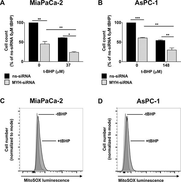 The effect of MYH knockdown on pancreatic cancer cell proliferation and sensitivity to oxidative stress.