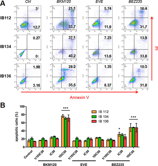 Effect of BEZ235, BKM120 and everolimus (EVE) on LMS cell apoptosis.