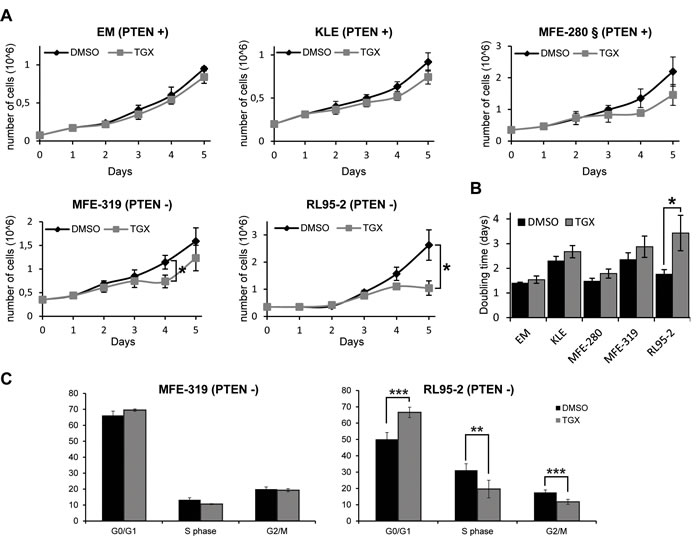 Inhibition of p110β delays cell proliferation in PTEN-deficient endometrial cancer cells.