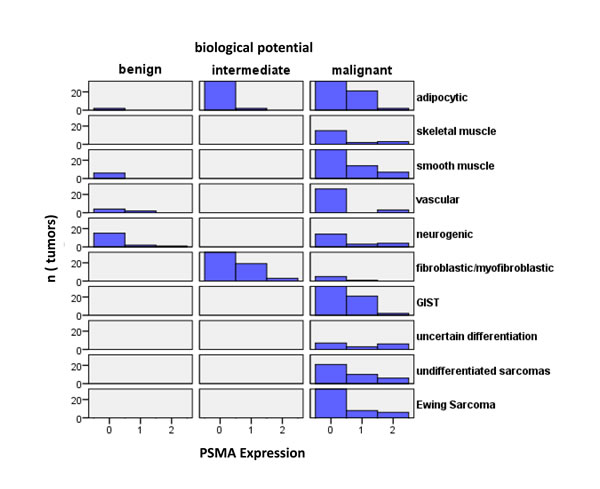 Histograms of tumors according to their biological potential and PSMA labelling index.