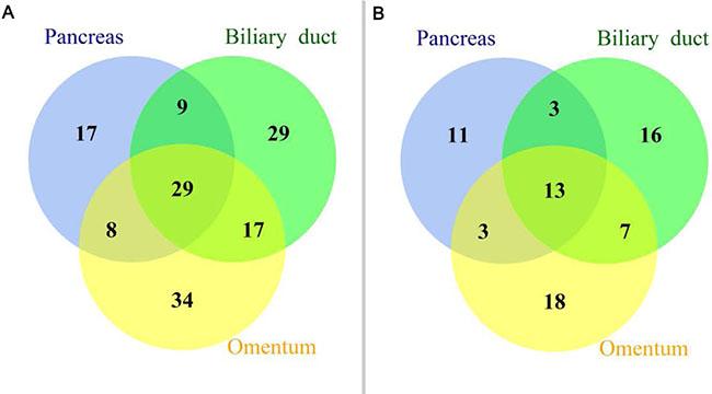 Mutational profiles of a panel of 390 key genes.