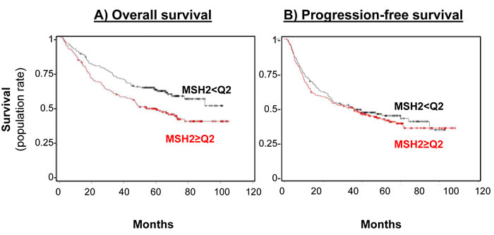MSH2 level impact on both overall survival (A) and progression-free (B) survival rates.