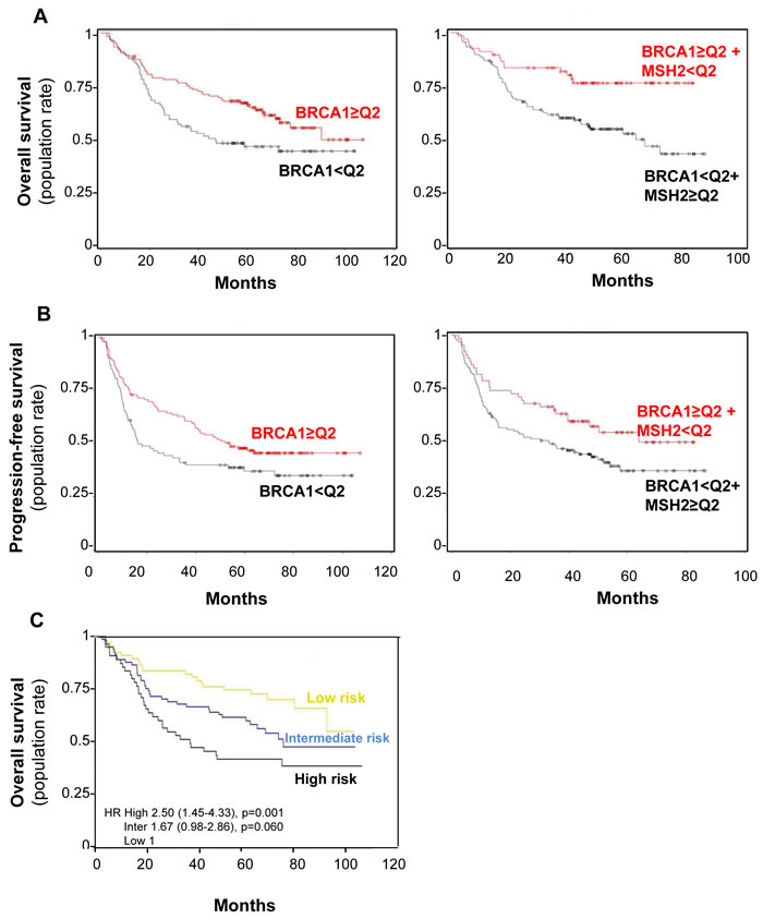 BRCA1 level impact on both overall survival (A) and progression-free (B) survival rates in combination with MSH2 level or alone.