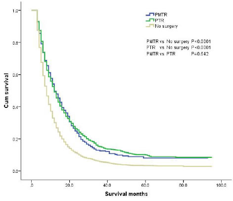 The survival curves of gastric cancer with distant metastases in different grups.