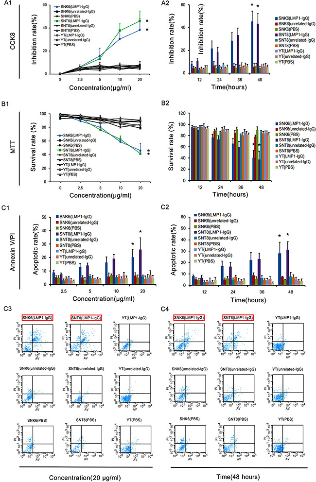LMP1-IgG inhibits proliferation and induces apoptosis of ENKTL cells.