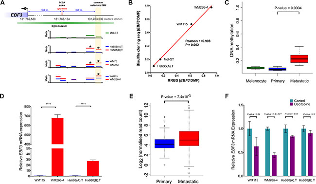 Confirmation of EBF3 promoter methylation using bisulfite sequencing, validation in an independent cohort, analysis of mRNA expression levels and the effect of DNA methylation inhibitor treatment on EBF3.