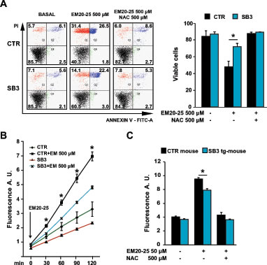 SB3 protects from oxidative stress and cell death elicited by the PTP opener EM20-25.