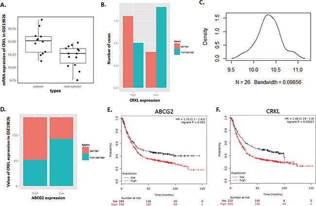 Expression of CRKL in Dataset GSE19826 is positively correlated with ABCG2, and illustrates a high risk of mortality for GC patients with high expression of ABCG2 and CRKL.