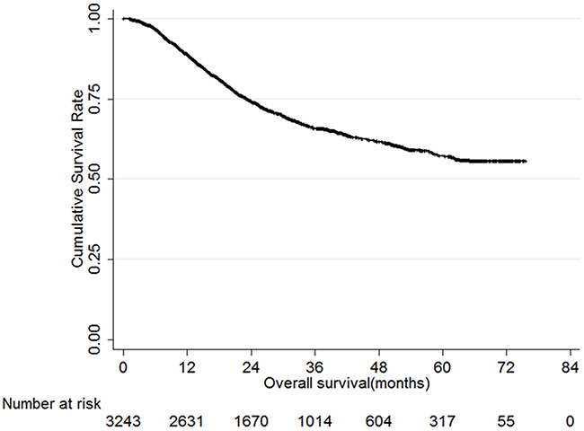 Overall survival of gastric cancer patients.