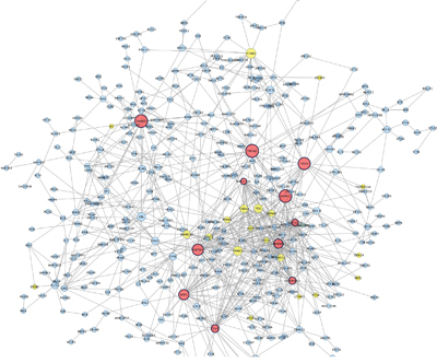 Protein Protein interaction network among down–regulated genes detected in co-cultured keratinocytes and melanocytes from individuals harbouring Red hair color MC1R variants (GSE44805 dataset).