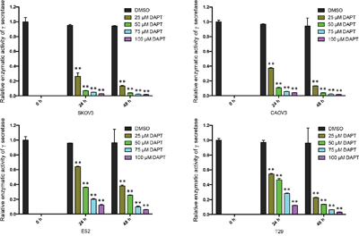 The relative enzymatic activity of γ-secretase in ovarian cancer cell lines and normal ovarian epithelial cell line after treatment of DAPT.
