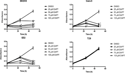 Effect of different concentrations of DAPT on the proliferation of ovarian cancer cell lines and normal cell line.