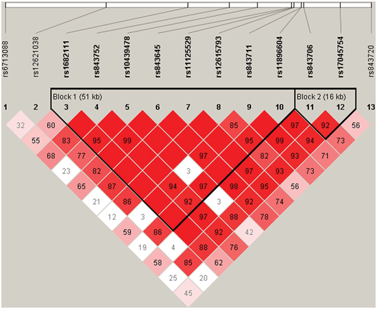 D' linkage map for the 13 SNPs in ACYP2.