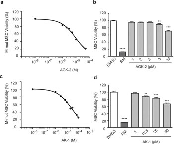 SIRT2 Inhibition With AGK2 and AK1 Selectively Decreases Merlin-Mutant MSC Viability.
