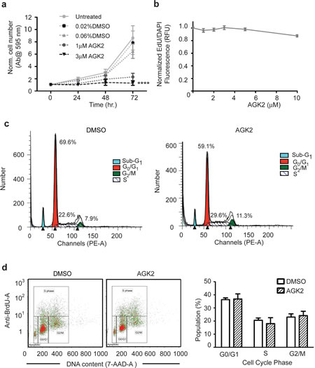 AGK2 Decreases Merlin-Mutant MSC Proliferation Without Interfering With Cell Cycle Progression.