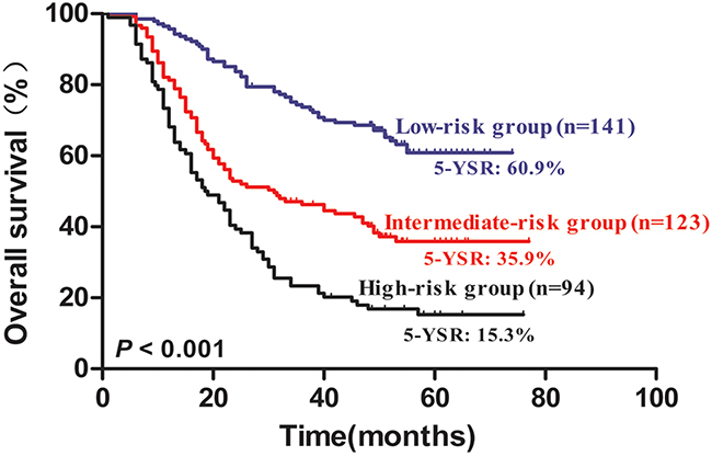 Kaplan–Meier survival curves for 358 NSCLC patients according to risk groups.