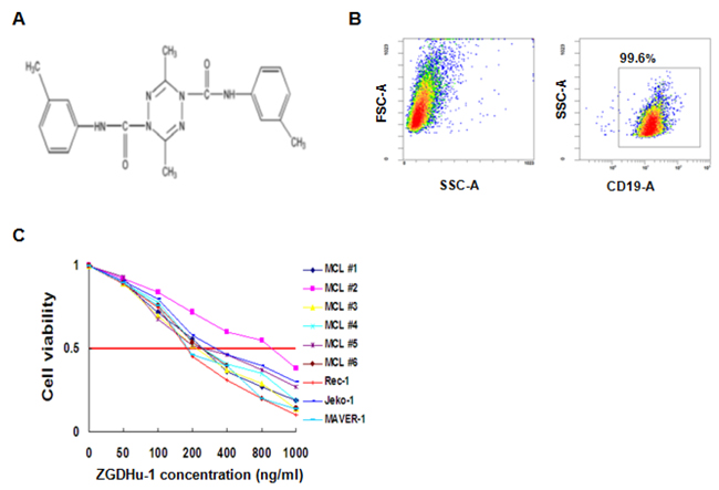 Identification of ZGDHu-1 as a potent anti-lymphoma compound in MCL cells.