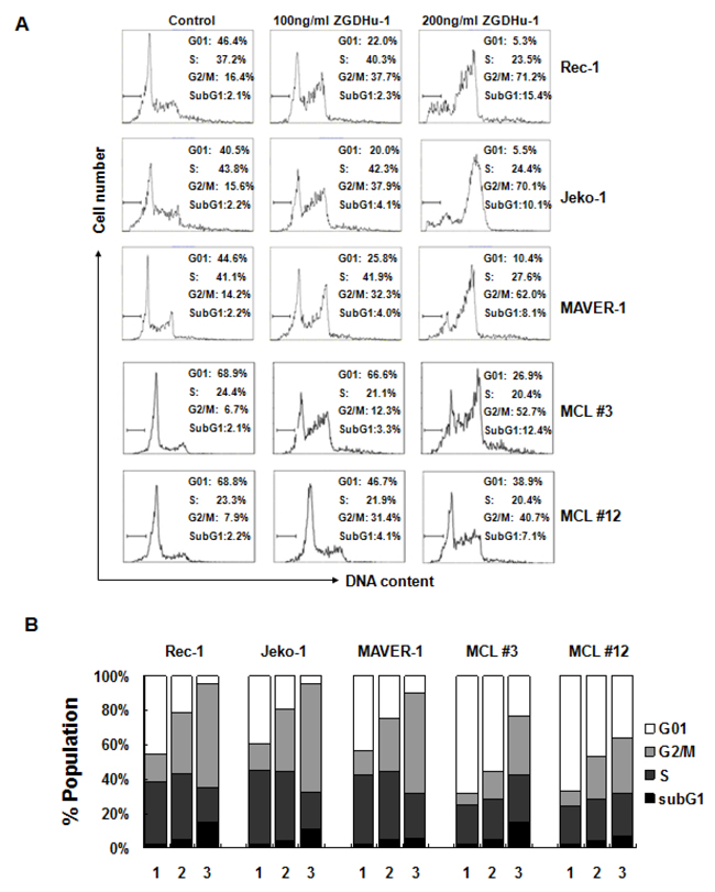 ZGDHu-1 induces cell cycle G2/M phase arrest in MCL cells.