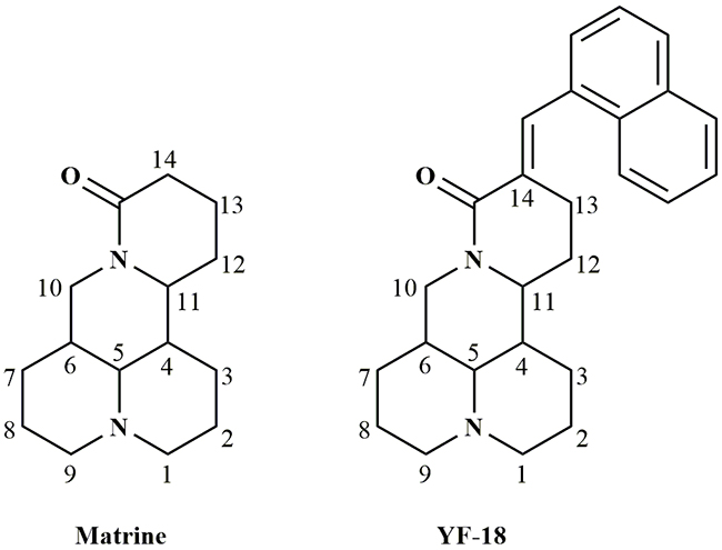 Structures of matrine and YF-18.