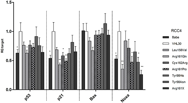 mRNA levels of TP53, p21, Bax, and Noxa in the established RCC4 stable cell lines.