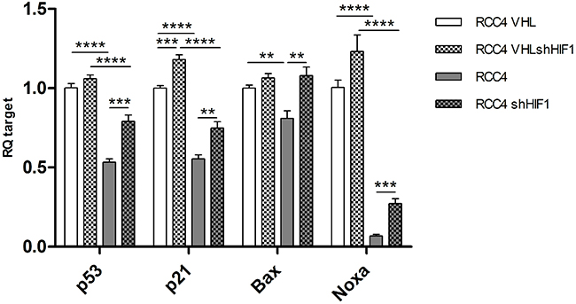 mRNA levels of TP53, p21, Bax and Noxa in RCC4 expressing VHL (white), VHL deficient (grey), and corresponding HIF1α knockdown (patterned).