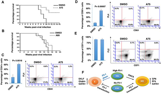 Distinct PKCA compounds can inhibit leukemogenesis in a mouse model of leukemia induced by Fli-1 retroviral insertional activation.