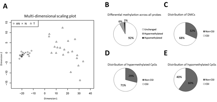 Differential methylation (T