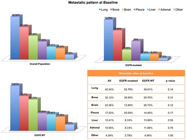 Metastatic pattern at baseline according to the EGFR mutational status.