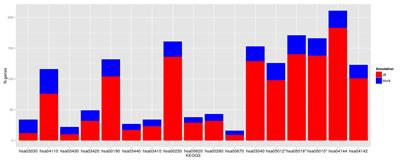 Deregulated pathways in RHC MC1R melanocyte-keratinocyte co-culture system.