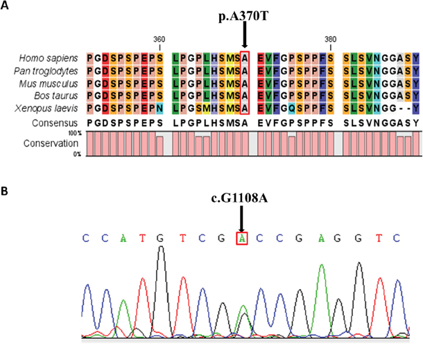 Conservative Prediction and Sequencing Validation.