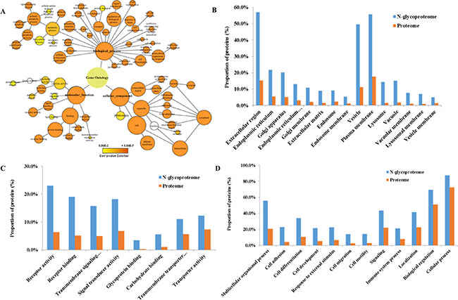 Gene ontology analysis.
