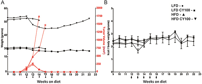 MC38 tumor growth and chemotherapy response in HFD mice vs LFD mice.