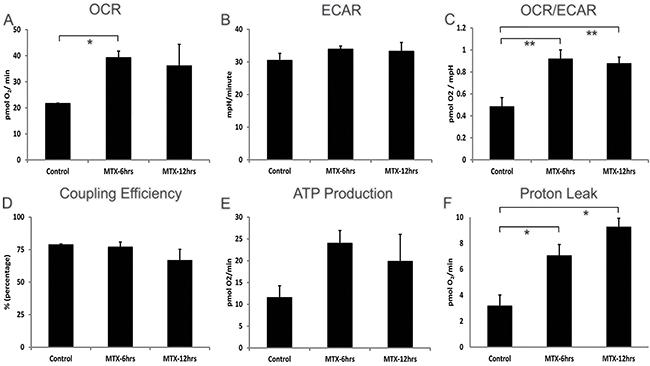 Cellular bioenergetics of human hepatocellular HepG2 cells treated with methotrexate 10 μM.