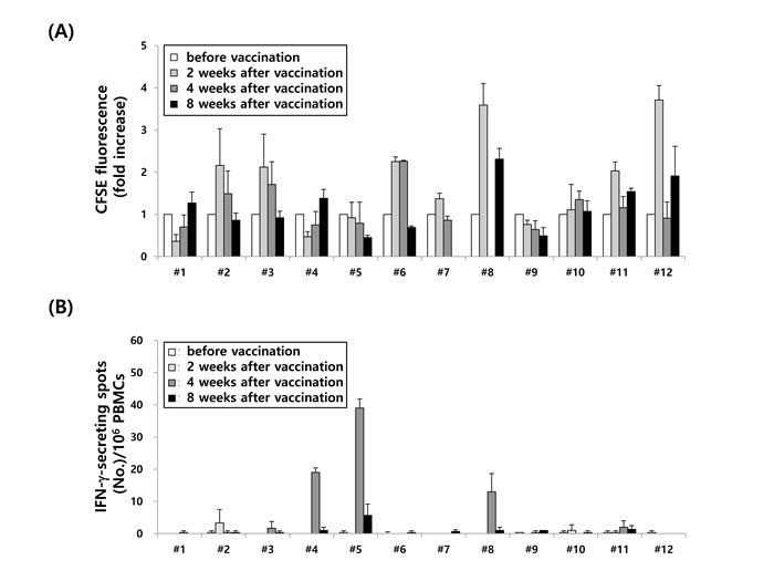 Immunological analysis in 12 MM patients before and after (VAX-DC/MM vaccination.