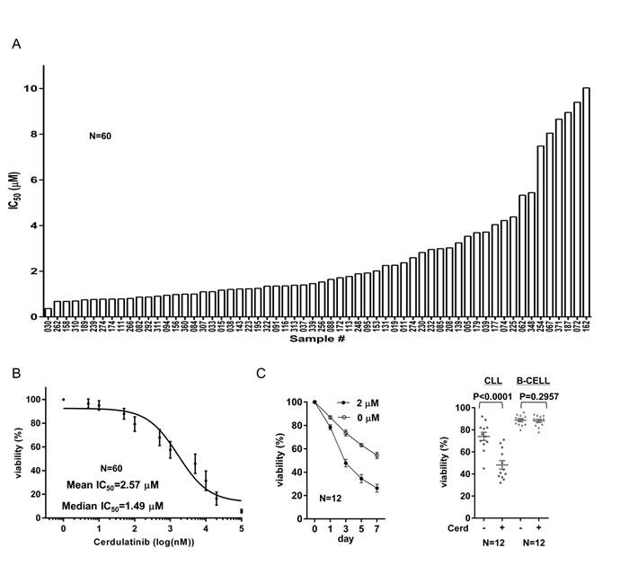 Oncotarget | Dual SYK/JAK inhibition overcomes ibrutinib resistance