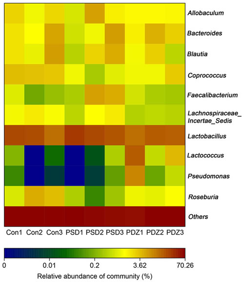 The heat map of 16S rRNA gene sequencing analysis of colonic mucosa at the genus level.