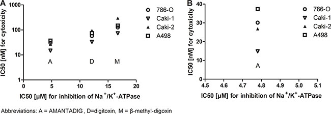 Cytotoxicity effects of cardiac glycosides and inhibition of Na+/K+-ATPase in four RCC cell lines.