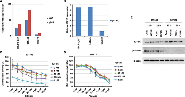 Effects on 93T449 and SW872 cells of combined treatment with CDK4 and IGF1R inhibitors.