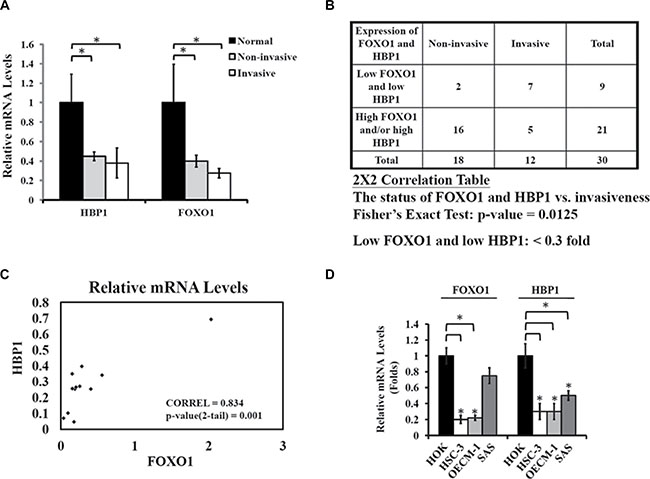 Coordinate down-regulation of FOXO1 and HBP1 in oral cancer.