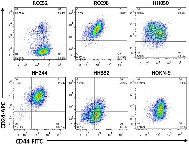 Two color cytofluorometric analysis on six different histologic RCC cell lines.