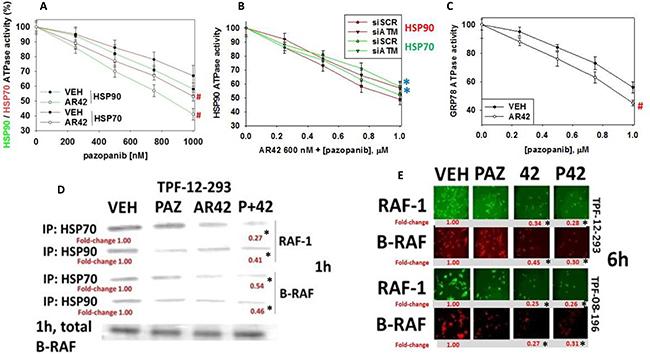 [Pazopanib + AR42] regulates chaperone function.