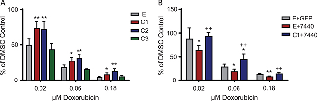 C/EBPβ overexpression leads to chemoresistance in Ewing sarcoma cells.