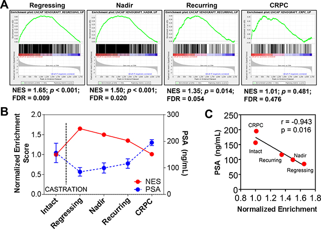 Reprogramming in vivo by androgen-deprivation and acquired therapy resistance.
